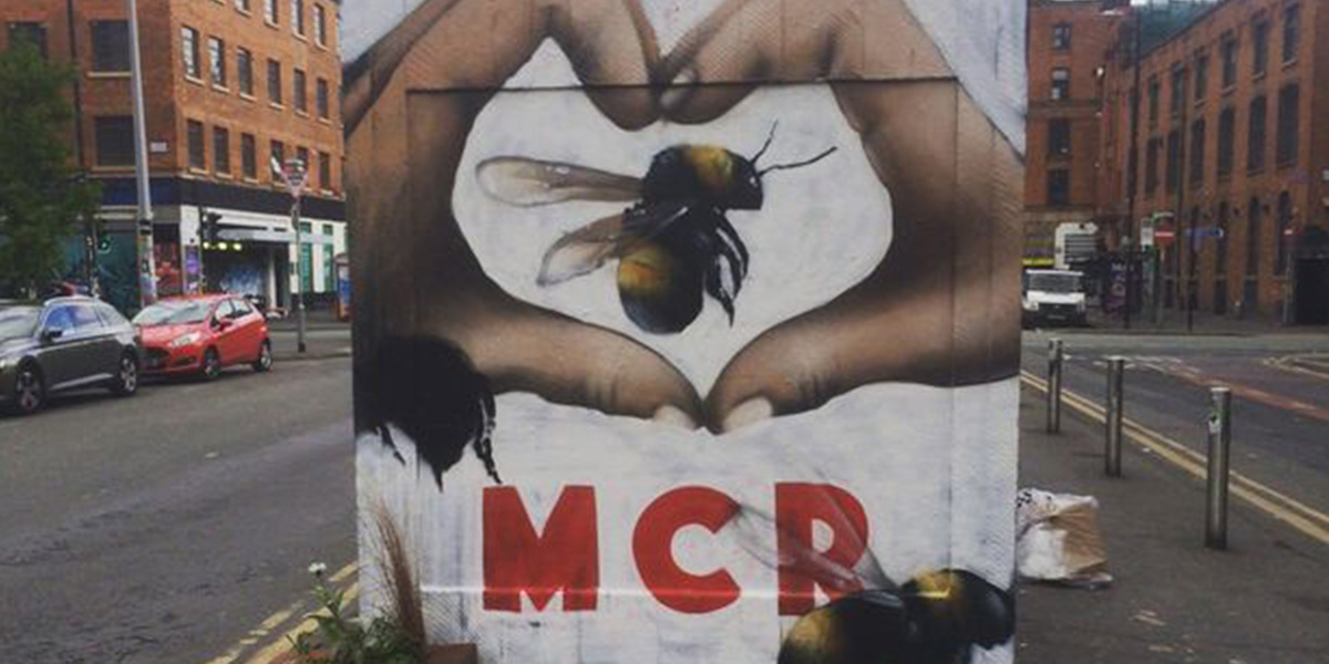 Manchester Graffiti of the bee by @qubekmanchester